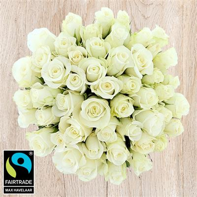 50 roses blanches